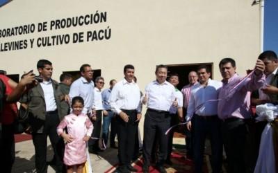 Habilitan el más moderno criadero de alevines de Latinoamérica